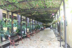 Taman Pergola/Taman Anggrek