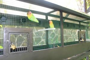 Taman Penangkaran Burung